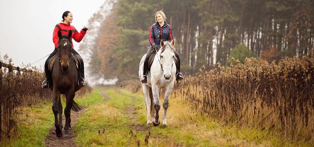 Dva kone na prechádzke - hipoturistika