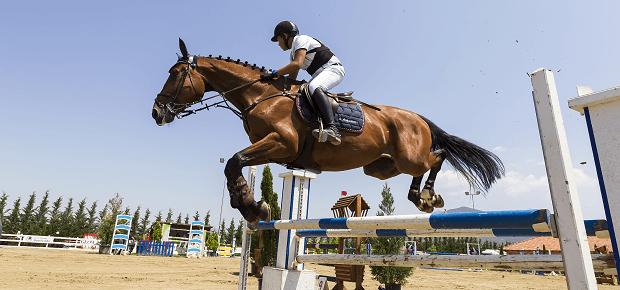 Jazdec na koni preskakuje prekážku