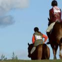 Vytrvalostné jazdenie na koni